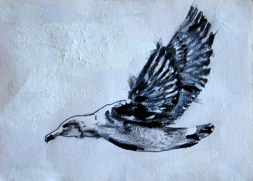 1999 Seagull Drawing Pencil & Correction ink on paper 21 x 15cm